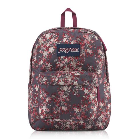 c8722c707fa4f Jansport Superbreak Backpack